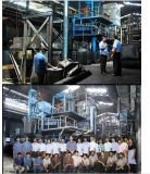 Charbon actif en poudre basé de charbon et à base de bois granulaire