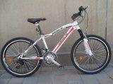 Bicicleta quente SR-GW23 da montanha de Sunrising das vendas