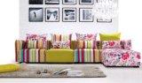 Il sofà ha personalizzato il cotone di buona qualità di molti formati