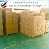 Courrier express exprès de la calculatrice TNT d'affranchissement de courier international de Chine vers le Canada