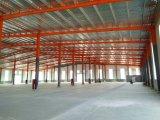 Edificio de acero de Structur del palmo grande para el almacén