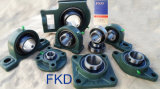 Kissen Block Bearings (Serien UCP200)