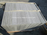 Floor Tile Paving Stone를 위한 새로운 G603 Grey White Granite