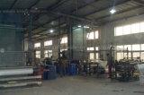 сетка стекла волокна стеклоткани 5*5 145G/M2