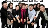 Gemaakt in China de Bal van het Staal van het Chroom van 1/8 Duim