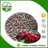 Fertilizante soluble en agua 100% 20-20-20 de la alta torre