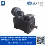 3 мотор AC Phaae 100kw 60Hz электрический