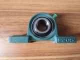 Cuscinetto all'ingrosso UCP205 o Ucpa205 del cuscinetto dell'inserto del cuscinetto UCP del blocchetto di cuscino