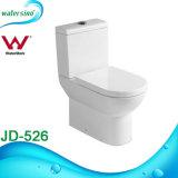 Duw van Fiiting van de badkamers de Hurkende Dubbele onderaan Tweedelig Toilet