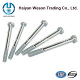 Edelstahl/Carbon Steel Hex Bolts u. Nuts Zinc Plated Hot Galvanized Hex Nut und Bolt.