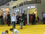 Camminata di modo dell'arco di stile del CCTV di Vfinder tramite il cancello