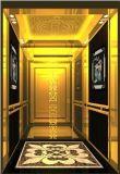 ステンレス鋼のヘアライン車の壁が付いている乗客のエレベーター