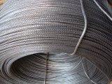 El precio bajo, alta calidad, Rebar del acero inoxidable