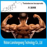 Iso CAS 15262-86-9 del testoterone Isocaproate/prova per l'aumento magro del muscolo