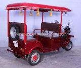 インドの安い価格の熱い販売の乗客の人力車