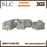 Salotto del sofà impostato (SC-A7676)