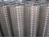 Steel di acciaio inossidabile/Iron/PVC Coated Welded Wire Mesh con lo SGS /CE Certification (zsw009)