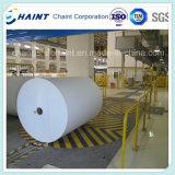 Moulin à papier - système de convoyeur pour le roulis de papier - machine de papier