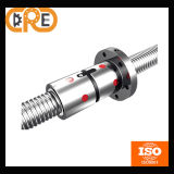 Professional Manufactrure and Bearing Steel (GCr15) for Industrial Machines Ball Screw