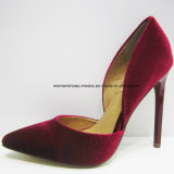 Cinco cores New Style Women Fashion High Heel Lady Dress Shoes with Pointed Toe