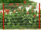 Загородка поставкы фабрики для парка или сада общины