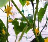 Landwirtschafts-Pflanzenstützineinander greifen/Plastikineinander greifen