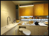 De Welbom do vidro Tempered armário 2015 de cozinha Unbreakable moderno