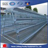 Jaulas Aves/cages de poule batterie de Gallinas (BDT025-JF-25)