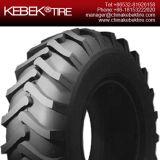 Alta calidad de China Agricultural Tractor Neumático 9,5-24
