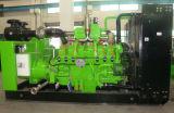 Biogas-Kraftwerk-/Biogas-Generator-Set/Biogas CHP-/biogas-Pflanze