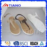Красивейшая сандалия ушивальника студня шарма для женщин (TNK50037)