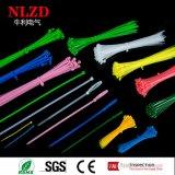 Serres-câble en nylon de grandeurs naturelles avec la conformité de RoHS AI de la CE