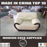 Mobilia moderna di Geniune di euro stile, sofà moderno