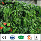 Decorative Nature Plastic Artificial Fake Boxwood Hedge Wall for Garden