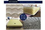 Colchón de resorte caliente de Bonnell de la venta con la fibra de coco 3e