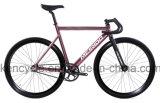 700c 알루미늄 고품질 자유로운 작풍 고침 기어 자전거 Sy-Fx70018