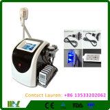 Gel de laser de cavitation portative de rf gros amincissant la machine Mslcy04L