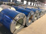 A cor revestiu a bobina de aço galvanizada com a alta qualidade