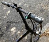 Burhslessギヤモーターまたは折るEバイク(SY-E2008)が付いている20inch Foldable Eのバイク