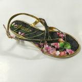 De kleurrijke Schoenen van Vrouwen voor Nieuw Ontwerp