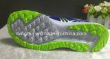 2016 neue bunte Sport-Schuhe