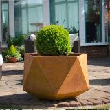 FO-9c06 de rechthoekige Planter van het Staal Corten met Om het even welke Grootte voor de Decoratie van de Tuin