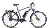 都市モデルは中間運転するモーター電気バイク(TDB19Z)を