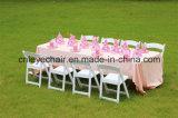 중국에서 Chiavari 의자가 아이에 의하여 착석시키거나 농담을 한다