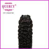 Cheveu malaisien d'onde d'eau de Vierge de prolonge de cheveu de bon type neuf des prix de la qualité 2017 (WW-030)