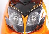 25インチの真空のタイヤの熱い販売の高品質の電気スクーター1200W 60V