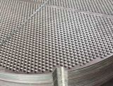 A182-F317L (AISI 317L, SS317L, UNS S31703,1.4438) forjado forjando los bafles SS 317 AISI 317 1.4449 Tubesheets de las placas de soporte de las placas de tubos de las hojas de tubo del acero inoxidable