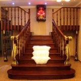 Escalier spiralé solide en bois de chêne de type européen (GSP16-012)