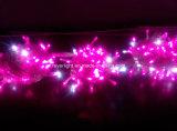 Indicatore luminoso di scintillio di natale degli indicatori luminosi leggiadramente del LED con le decorazioni del regolatore