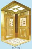 Elevatore ed elevatore domestici con l'alta qualità